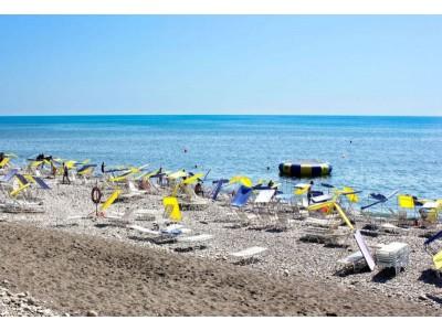 Пансионат Шексна| Сочи|  пляж